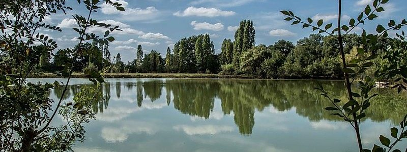 Carp Fishing Holidays at Lac Solace in France