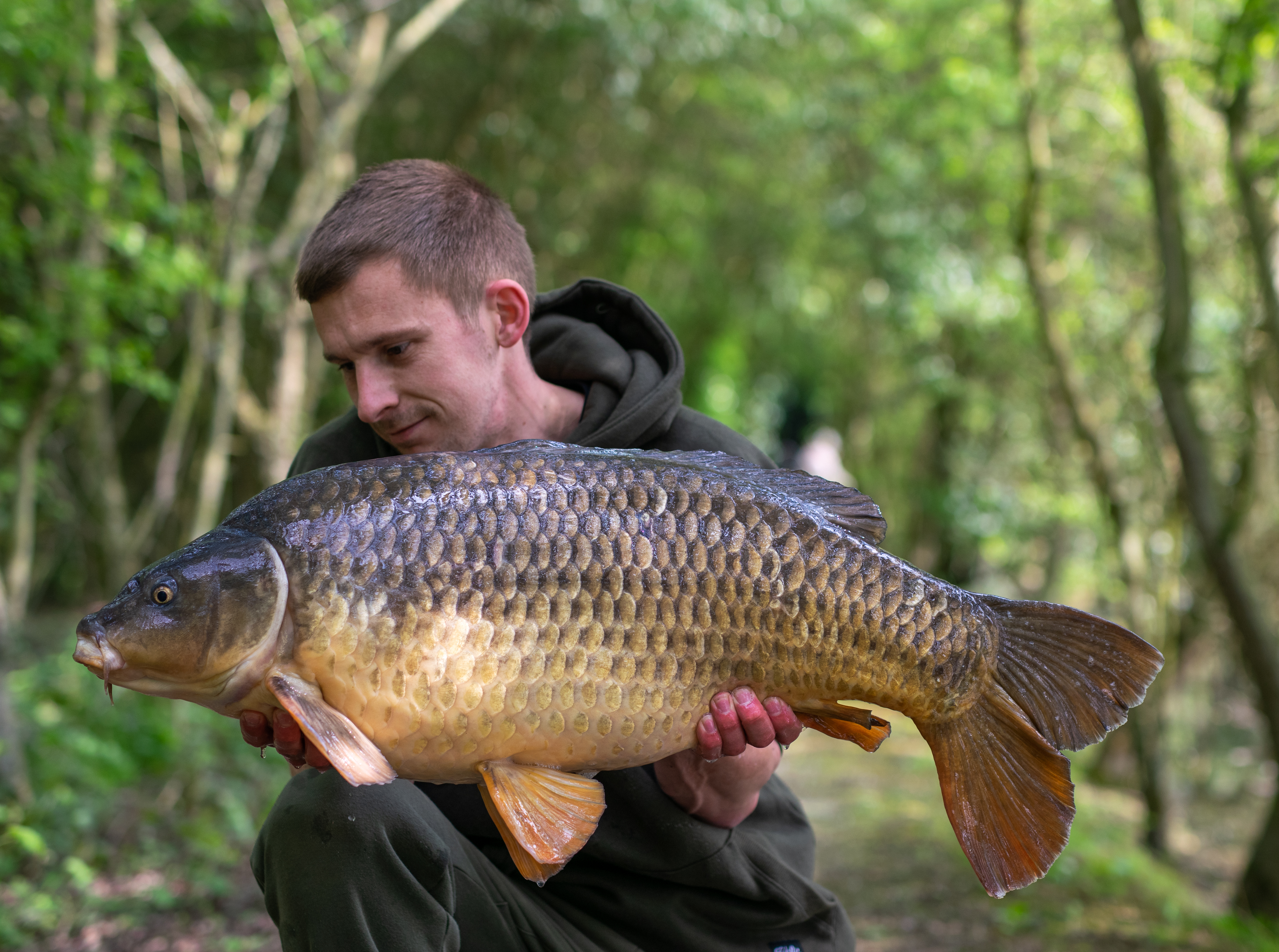 Jack with a Spring Common Carp