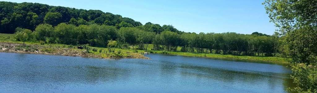 Lake Exclusive Carp Fishing Holidays in France