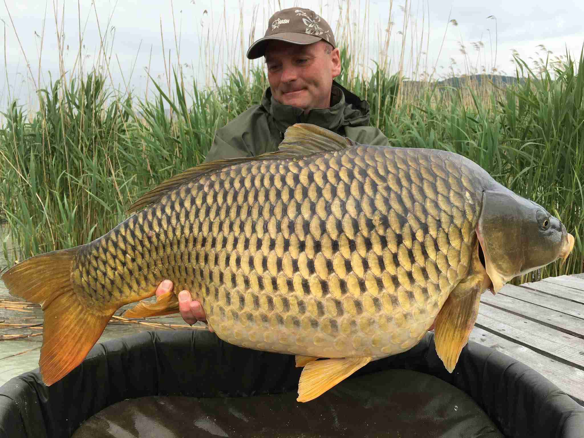 Carp Fishing Holidays Hungary